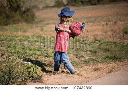 Funny Scarecrow In A Field