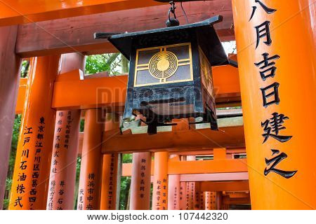 Path Of Torii In The