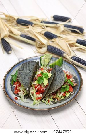 homemade blue corn tortilla tacos, mexican food