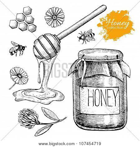 Vector Honey Set. Vintage Hand Drawn Illustration.