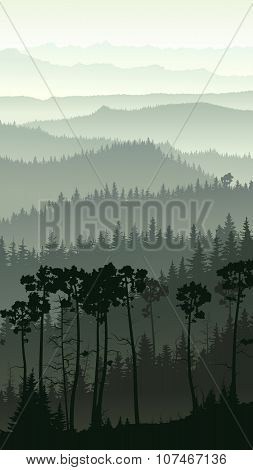 Vertical Illustration Of Misty Forest Hills.