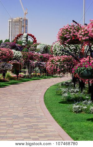 April 2015. Park alley with many flowers . Dubai Miracle Garden in the UAE.