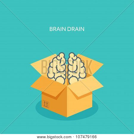 Vector illustration. Flat carton box. Brains. Brain drain.