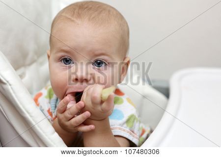 Baby With Celery