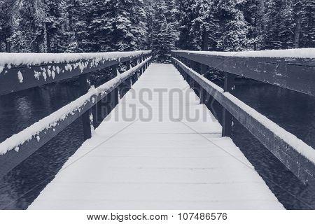 Glacier National Park, Montana. Winter.