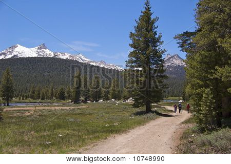 Hikers on Soda Springs Trail, Yosemite