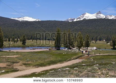 Hikers near Tuolumne River, Yosemite