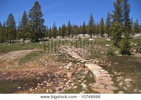 Trail through Soda Springs, Yosemite