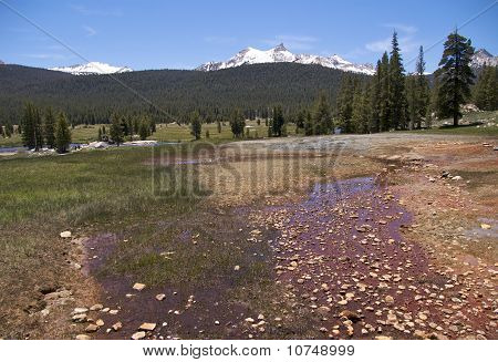 Soda Springs, Yosemite