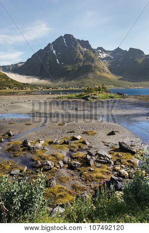Summer Landscape Of Lofoten Islands