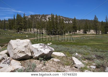 Soda Springs Trail, Yosemite