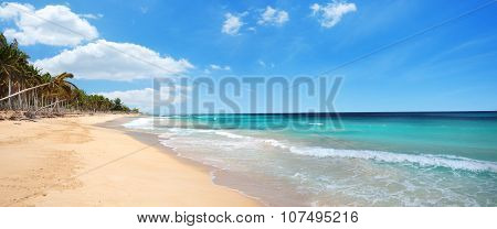 Macao Beach And Ocean Waves Panoramic View, Dominican Republic