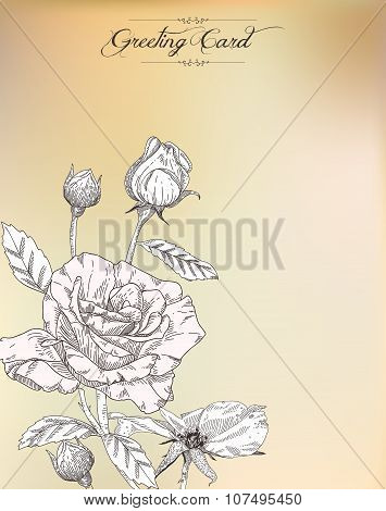 Vintage Greeting Card With Rose.