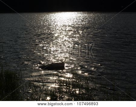 Sun's Reflection On The Surface Of A Pond