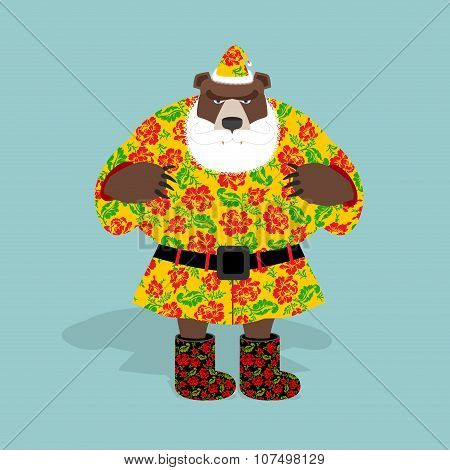 Russian Bear In Guise Of Snata Claus. Wild Animal In Christmas Attire. New Years Character. Russian