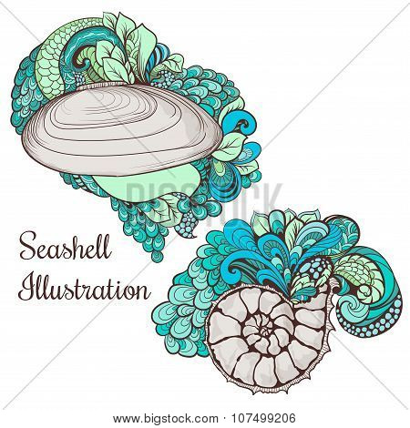 Beautiful seashell sketches for your design