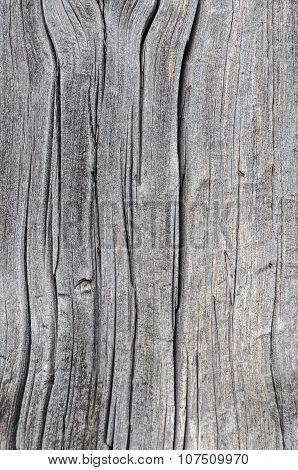 Old Cracked Wooden Plank Texture