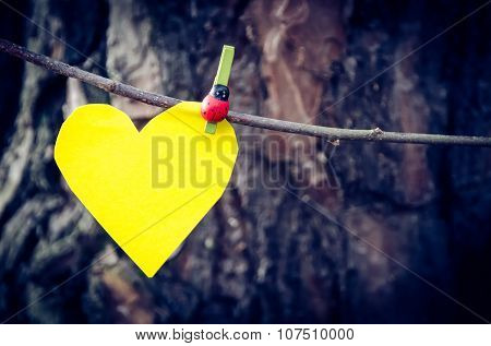 Yellow heart and nature.