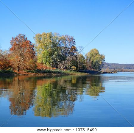 Sycamore and Maple Tree River Shoreline Landscape. Autumn or Fall Season.