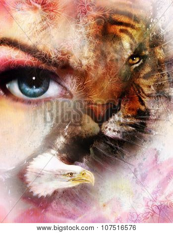 eagle and tiger face and womamn eye on  abstract background, with ornaments.