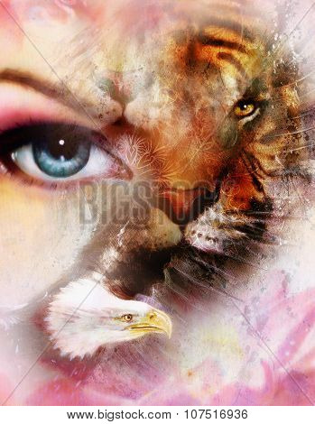 eagle and tiger face with womamn eye. Abstract background with ornaments