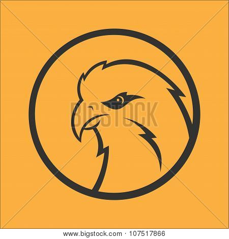 Eagle, hawk, falcon logo. Sport mascot. Predator bird logotype template