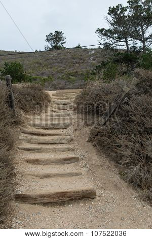 Coastal Stairway Access