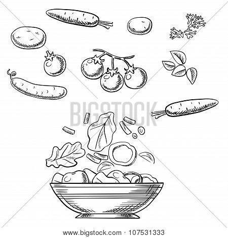 Cooking fresh healthy vegetarian salad sketch