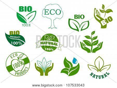 Bio, eco and natural products green symbols