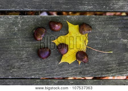 Chestnuts outside on wooden table with yellow leaf