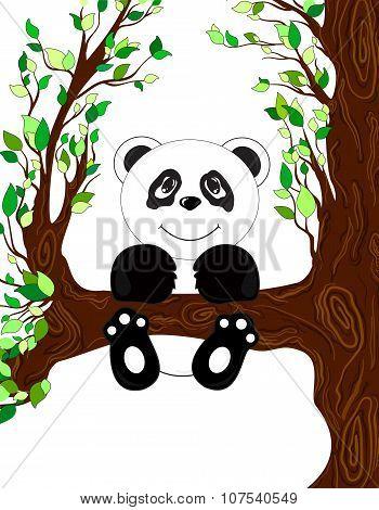 Panda on tree vector illustration
