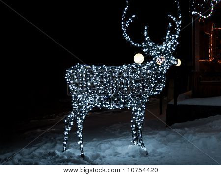 Deer From The Wires