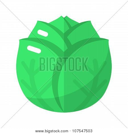 Cabbage flat icon