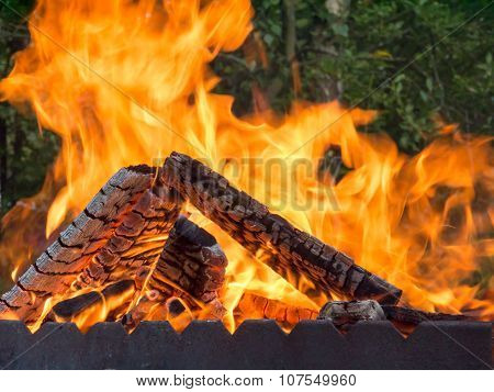 Open Fire For Barbecue