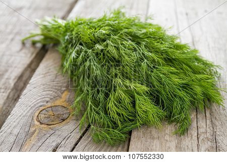 Dill bunch on rustic wood background