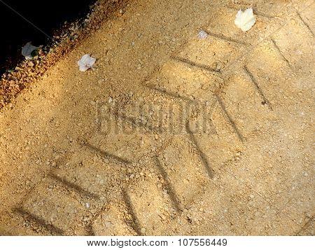 Excavator Caterpillar Track