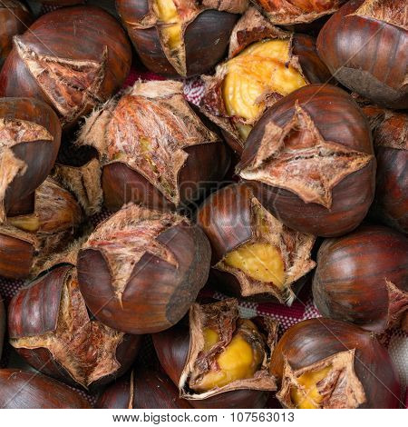 chestnut open and cooked