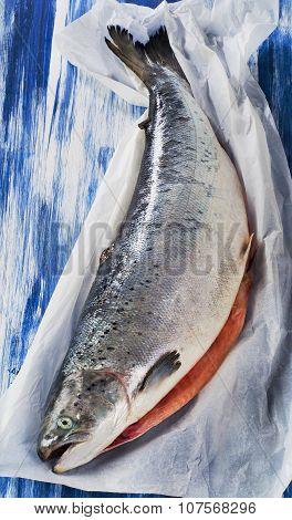Fresh Raw Whole Salmon . Healthy Food.
