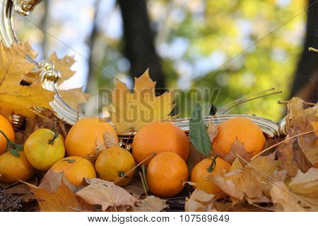 Reflexion In A Mirror Of Autumn Leaves, An Autumn Mirror And Tangerines