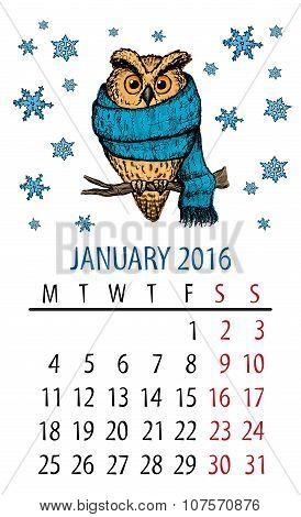 January owl calendar.