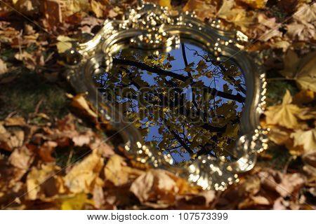 Reflexion In A Mirror Of Autumn Leaves, An Autumn Mirror