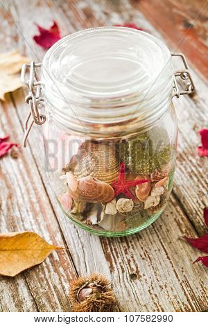 Concept Of Changing Seasons Summer In Jar In Rustic Setting