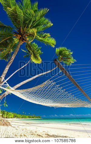 Empty hammock under palm trees on deserted beach of Fiji Islands