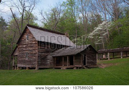 Rural Springtime Cabin