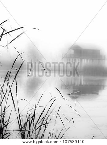 foggy autumn landscape in black and white