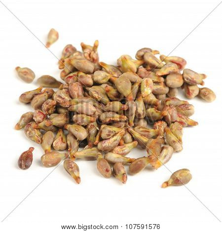 Grape Seeds Isolated On White Background