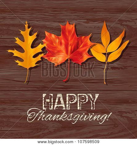 Thanksgiving Day background with autumn leaves. Vector illustration.