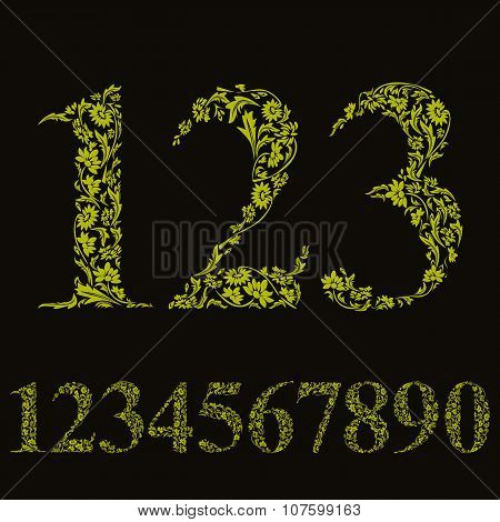Beautiful Floral Numbers Set, green Vector Numerals.
