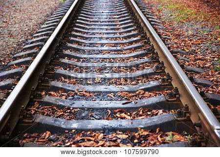 Railway track over green trees background