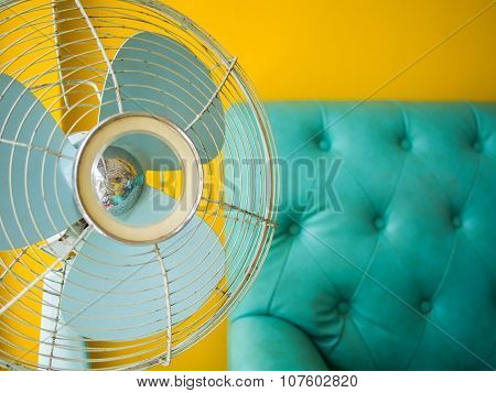 Fan Sofa And Yelloe Wall